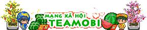 Logo tet